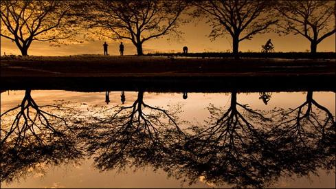 Reflection-07