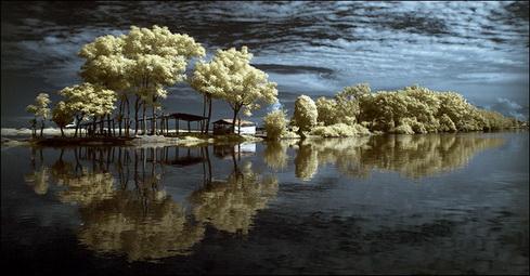 Reflection-11