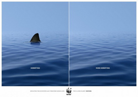 WWF - Horrifying vs MORE horrifying.